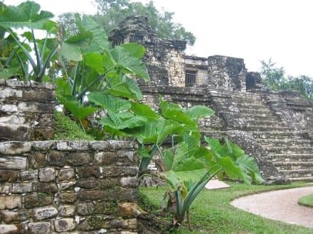 Palenque - Maya Pyramiden Palenque