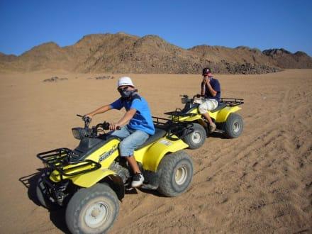 Quadtour in der Wüste - Quad Tour Safaga