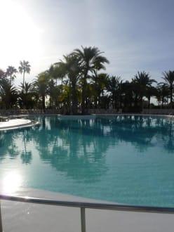 Бассейн - Hotel Riu Papayas.