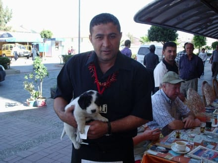 Mehmet und Boncuk - Ha Döner Ha Pizza