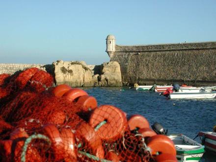 Forte da Ponta da Bandeira - Forte da Ponta da Bandeira