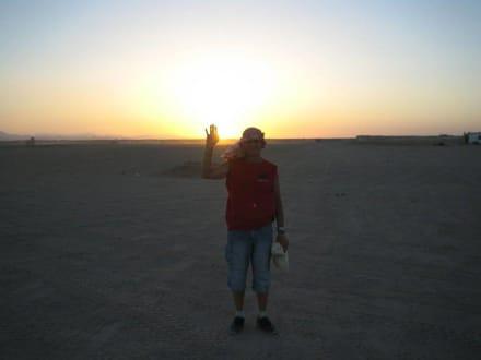 In der Wüste - Quad-Tour - Quad Tour Hurghada