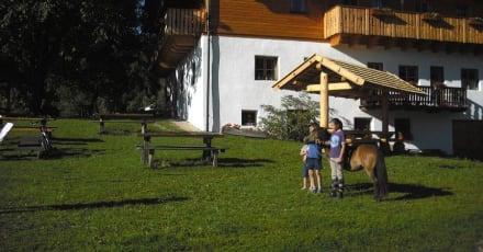 Außenbereich Bacherhof - Bauernhof Bacherhof