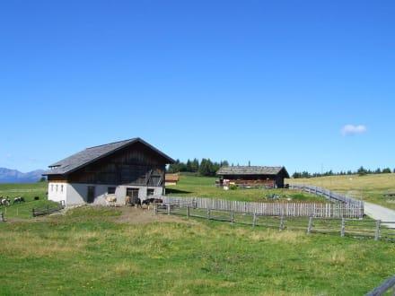 Bewohnte Hütten auf der Rodenecker Alm - Rodenecker Alm