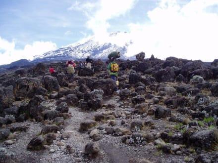Kilimanjaro Machame Trail - Kilimanjarobesteigung