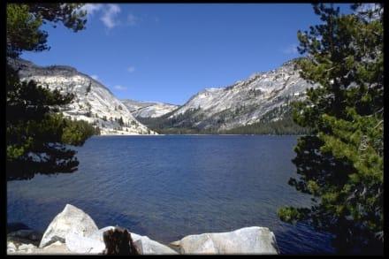 Tioga Lake - Yosemite Nationalpark