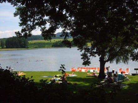 Bootsverleih - Sulzberger See