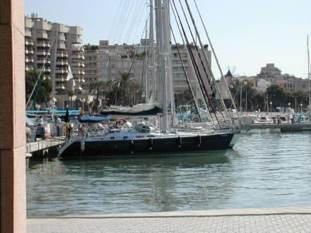 Hafen in Palma - Hafen Palma de Mallorca