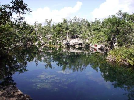 Maya Adventure Snorkeling Tour / Offene Cenote - Cenoten