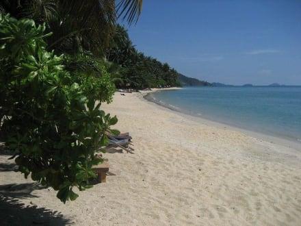 Strand - Nice Beach