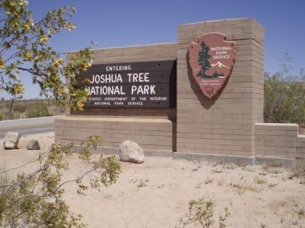 Joshua Tree National Park - Joshua Tree National Park