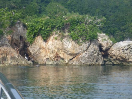 Mangroventour - Los Haitises Nationalpark