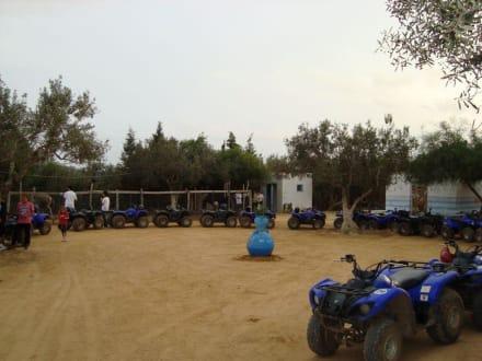 Quadtour - Quad Tour Sousse