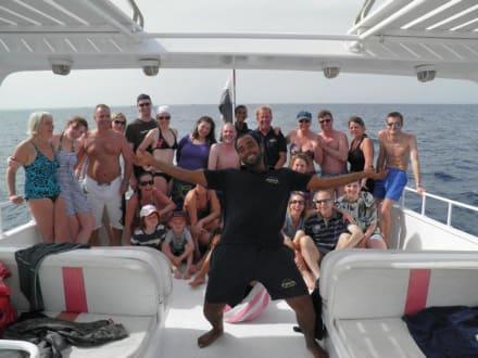 Die Gruppe mit Besatzung - Delfinschwimmen Delfine & Meer
