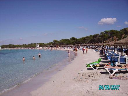 Strandabschnitt - Platja Estanys