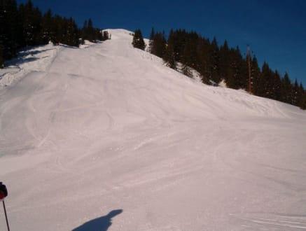 Gratabfahrt 36a - Skigebiet Saalbach