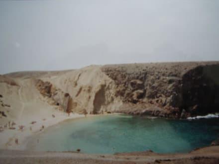 Überblick über einen Papagayo Strandabschnitt - Playa de Papagayo