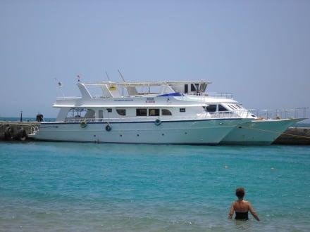 Blick auf den Bootsanleger - Schnorcheln Hausriff Palm Beach Resort Hurghada