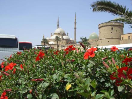 Bushaltestelle an der Moschee - Zitadelle