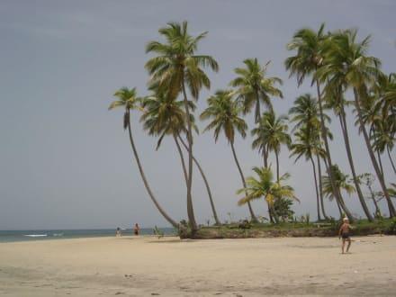 Playa Esmeralda - Halbinsel Samana
