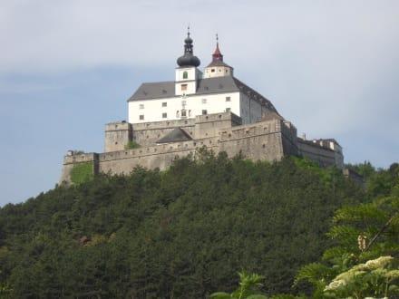 Burg Forchtenstein - Burg Forchtenstein