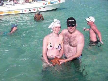 und die vielgerühmten Estrella de mar.. - Katamaran Tour Punta Cana