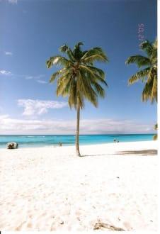 Traumstrand - Isla Saona