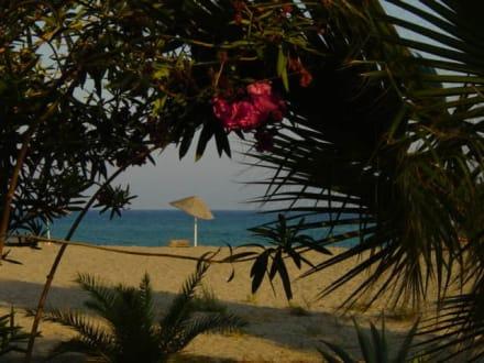 Anamur Iskele Strand mit Park - Strand Anamur