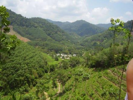 Region Phang Nga - Phang Nga Rafting