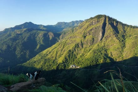 Morgendlicher Blick vom Little Adam´s Peak - Guide Ranga Kalutara
