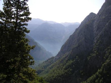 Blick über die Samaria Schlucht - Samaria Schlucht