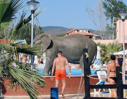Freizeitpark - Aquapark Nessebar
