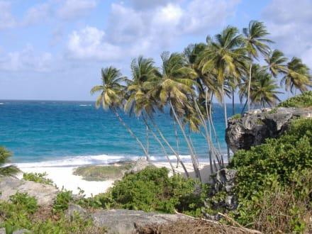 Strand in Bottom Bay - Bottom Bay