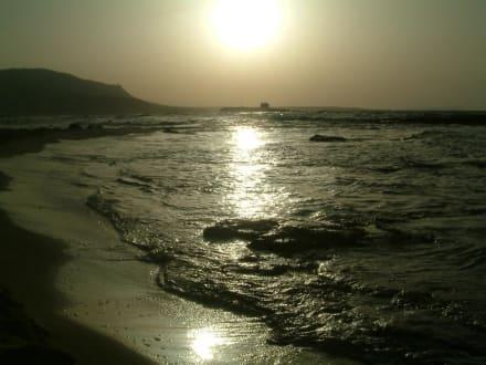 Malia - Strand Malia