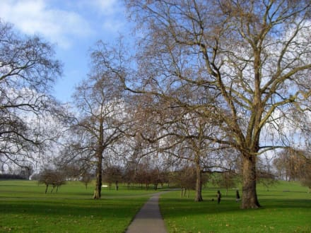Der Weg zum Primrose Hill, London. - Primrose Hill
