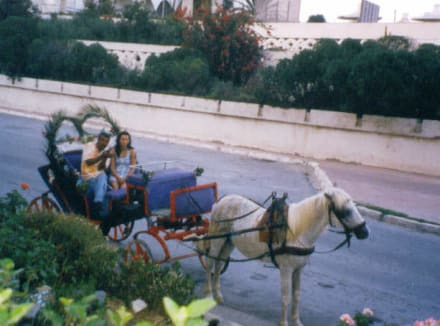 Transport (other) -