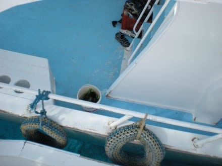 Das beste auf dem Boot! - Giftun / Mahmya Inseln