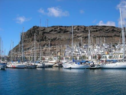 Blick auf Puerto de Mogan - Ausflüge Schifffahrt Bussard Tazacorte
