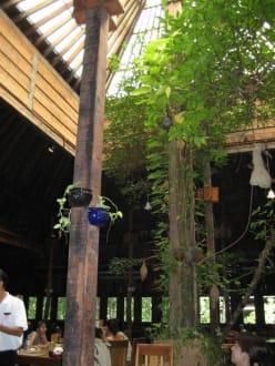 Das Thairestaurant in den Mangroven - Mangroventour Peter Höfinger