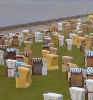 Viele Strand-Sessel. - Strand Büsum