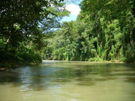 Flossfahrt auf dem Great River - Flossfahrt
