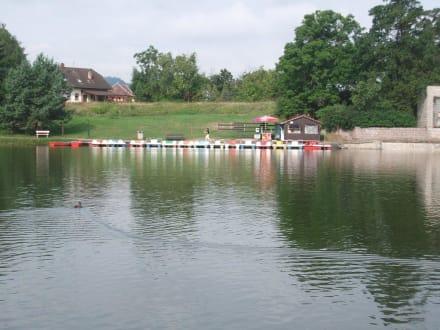 Macha See - See von Doksy / Máchasee