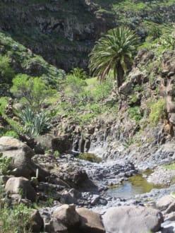Landschaft oberhalb des Valle Gran Rey - Landschaft im Valle Gran Rey