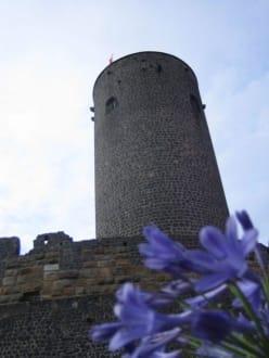 Der Turm - Burg Münzenberg