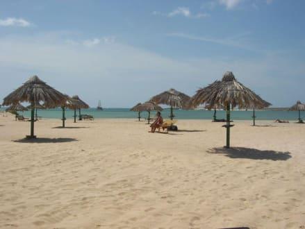 Tortuga Beach - Tortuga Beach Bar & Restaurant
