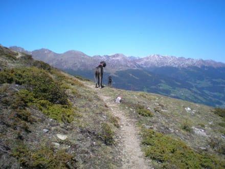 Gipfelsturm - Wandern Ultental