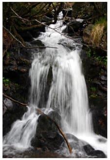 Wasserfall am Feldberg im Schwarzwald - Feldberg