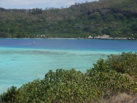 Von Private Island zur Sofitel Hauptanlage - Hotel Sofitel Bora Bora Marara Beach & Private Island