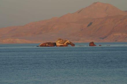 Das Schifswrack  im Meer - Rotes Meer
