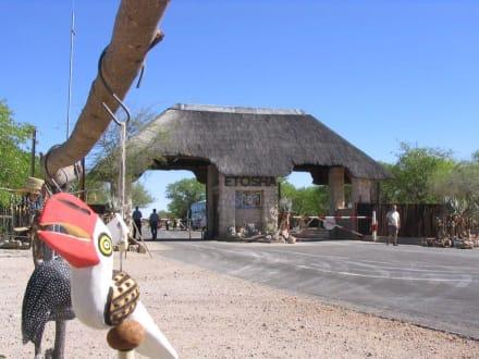 Haupteingang zum Etoscha-Nationalpark - Etosha Nationalpark